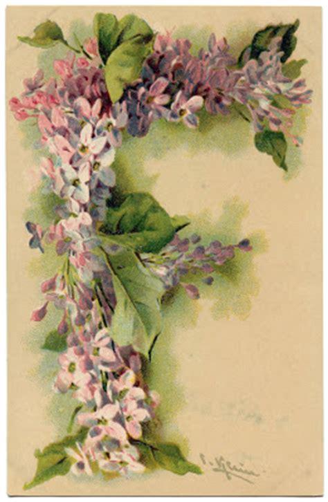 victorian graphic lilac monogram letter