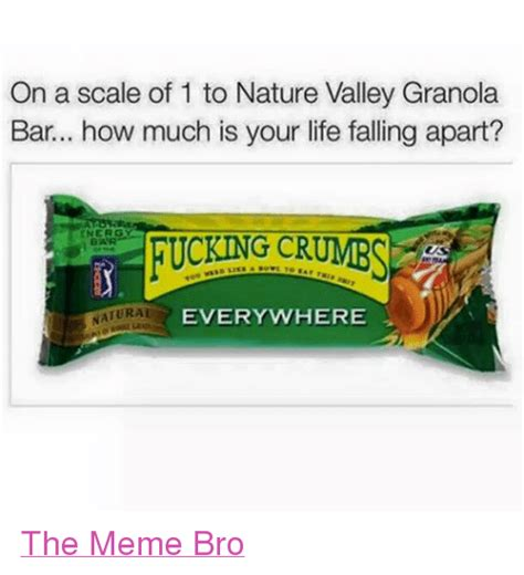 Nature Valley Meme - on a scale of 1 to nature valley granola bar how much is your life falling apart g cr natural