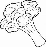 Coloring Vegetable Pages Broccoli sketch template