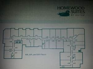 layout of the rooms on each floor picture of homewood With homewood suites floor plans
