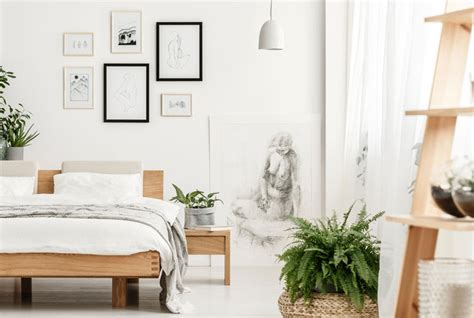 Bedroom Inspiration Plants by The 20 Best Bedroom Plants To Help You Get A Better Sleep