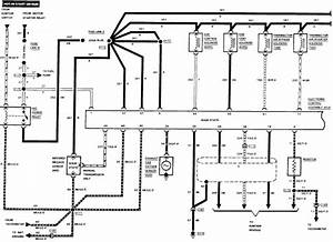 How Do I Test Fuel Injection System  The Injector Have