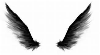 Dark Angel Wings by 27...
