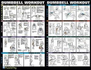 34 best images about Dumbbell Workouts on Pinterest Your