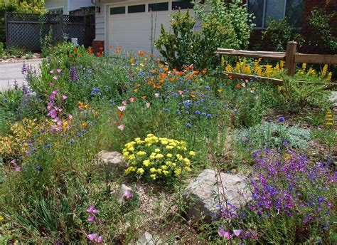 california plant gardens garden design california native plant society blog