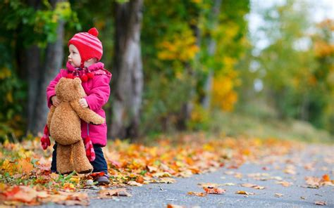 Child Bear Toy Autumn Leaves Nature Wallpaper
