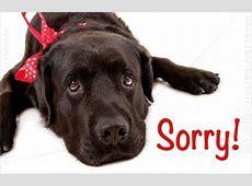 Minikarte Glückwunschkarte Entschuldigungskarte süßer