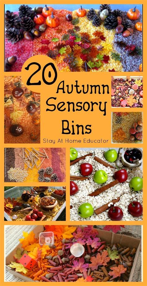 sensory projects for preschoolers 211 best fall autumn sensory activities images 306