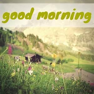 18 Good Morning... Morning Mountain Quotes