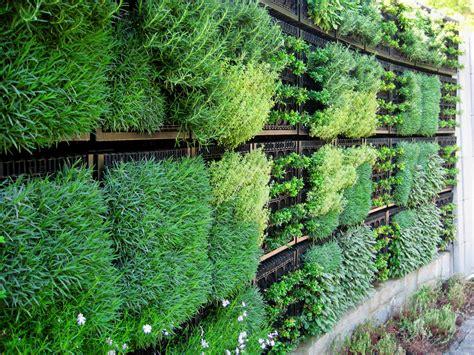 Vertical Gardening : Edible Vertical Gardens With Elmich Green Walls