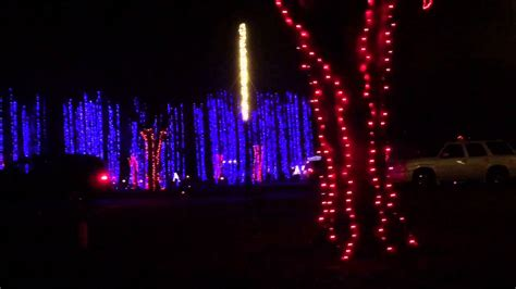 the dancing lights of christmas at jellystone park youtube
