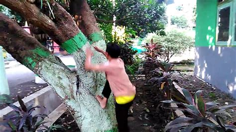 tutorial cara memanjat pohon mangga dengan benar youtube