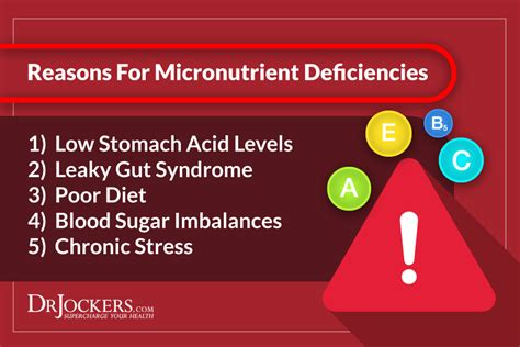 micronutrients    test  levels