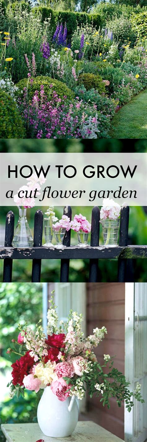 how to grow flowers free spring phone wallpaper and art print setting for four