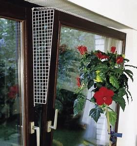 Stromkabel Durch Fenster : die 10 gr ten gefahrenquellen f r haustiere im haushalt ~ Kayakingforconservation.com Haus und Dekorationen