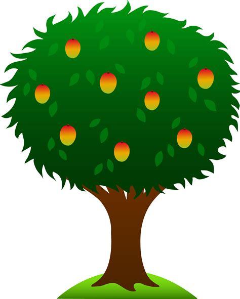 mango tree  ripe fruits  clip art