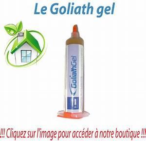 Produit Efficace Contre Les Cafards : goliath gel efficacit redoutable depuis les ann es 90 ~ Dailycaller-alerts.com Idées de Décoration