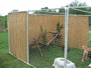 diy cat enclosure easy diy cat bird enclosure cat enclosure