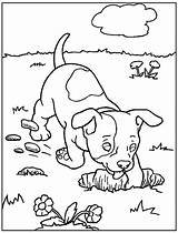 Coloring Dog Printable Dogs Dane Cartoon Definition Colouring Puppy Doge Animal Superdog Krypto Coloringhome Library Clipart Popular Dolphin Coloringfolder Template sketch template