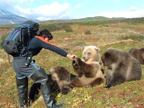 Kamtschatka Jungbären bei der Rast   Reisenews Online