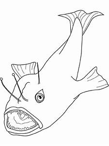 Angler Fish Catching Prey Coloring Pages Best Place To Color