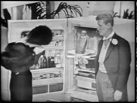mike nichols and elaine may youtube g e refrigerators commercial with mike nichols elaine