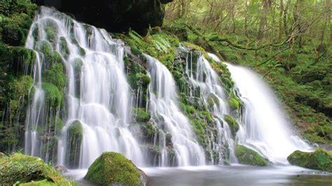 Landscape Waterfall Rocks Trees Hd Wallpaper 159097
