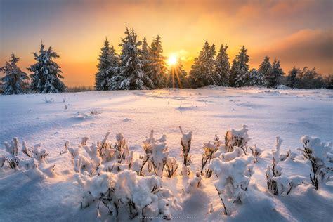 winter wonderland im    winter wonderland