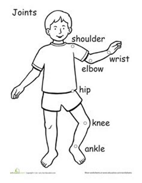 pe worksheets images worksheets physical