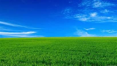 1080p Nature Wallpapers Desktop Background