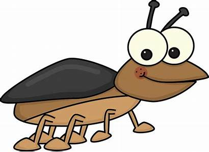 Clipart Bug Clip Cliparting