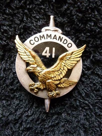 Commando Forces Army Special Insignes Militaires Indian