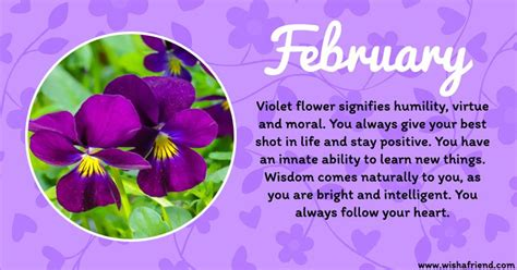 Pin by Sydney Bales on Tattoos   Birth flowers, February ...