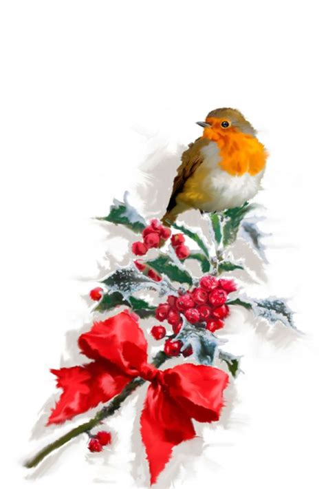 50 best art robin snow holly images pinterest christmas bird christmas cards and