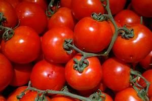 Tomaten Richtig Schneiden : ausgeizen tomaten 10 tipps f r eine reiche tomaten ernte ~ Lizthompson.info Haus und Dekorationen