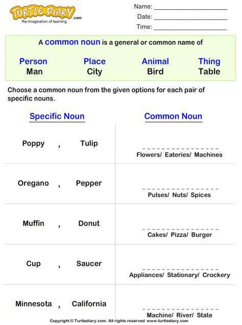 choose common noun   pair  proper noun worksheet