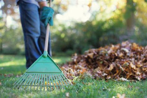 Lavori Da Fare In Giardino A Novembre