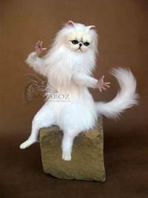white cat meme new cat room guardian by anyaboz on deviantart
