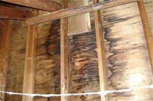 Infiltration Eau Toit : signes d infiltration d eau par la toiture ~ Maxctalentgroup.com Avis de Voitures