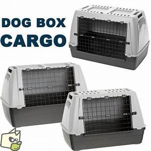 Cage Transport Chien Voiture : dog box cargo cage de transport automobile pour chien amstaff americane staff pinterest ~ Medecine-chirurgie-esthetiques.com Avis de Voitures
