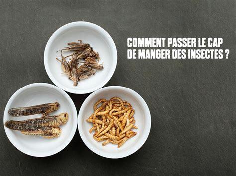 savoir cuisiner comment manger des insectes 8 idées pour vous y mettre