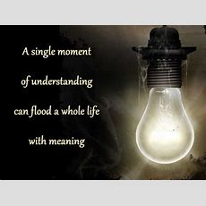A Single Moment Of Understanding Can Flood A Whole Life With Meaning  Life Quote