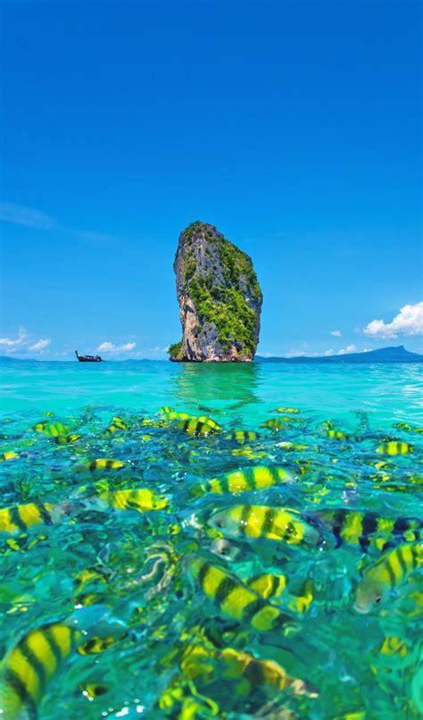 things to do in phuket best 25 phuket ideas on