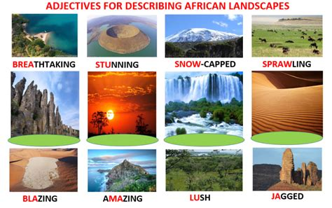 Describing Africa Vocabulary, Quiz, Crossword Puzzle, Word Search, Worksheets  Learn English