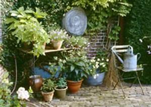 Blumen Für Schattigen Balkon : efeu begonien und kirschlorbeer schattenpflanzen f r den nordbalkon ~ Orissabook.com Haus und Dekorationen
