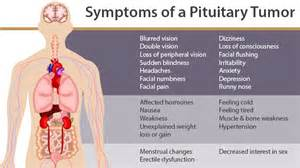 cancers as related to pituitary tumor - pictures, Human Body