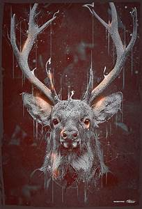 17 Best images about Deer • Ciervos on Pinterest   Posts ...