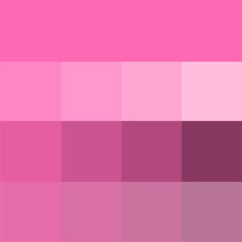 black and white l shades pink shades hue pure color with tints hue