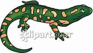 Green Salamander With Orange Spots - Royalty Free Clipart ...