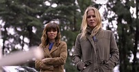 What Is Netflix's Dead To Me TV Show About? | POPSUGAR ...